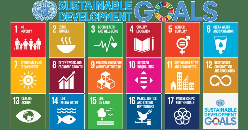 2020-sustainable-goals
