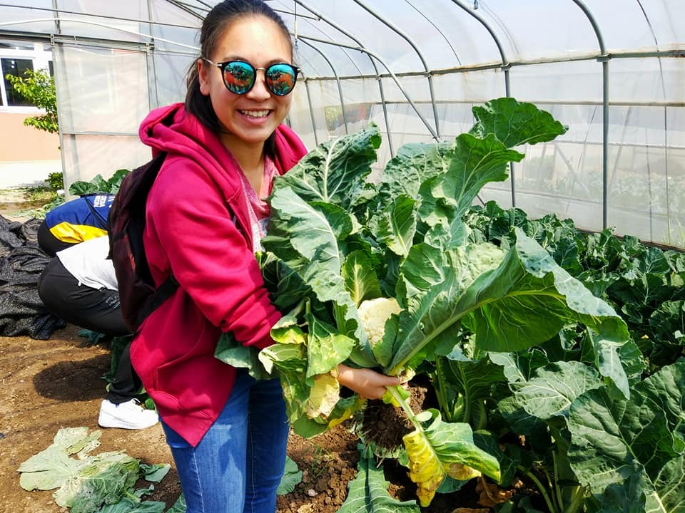 learning-organic-food-sources-shanghai-students